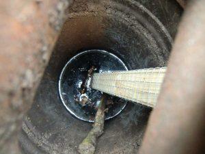 paddenladder in put